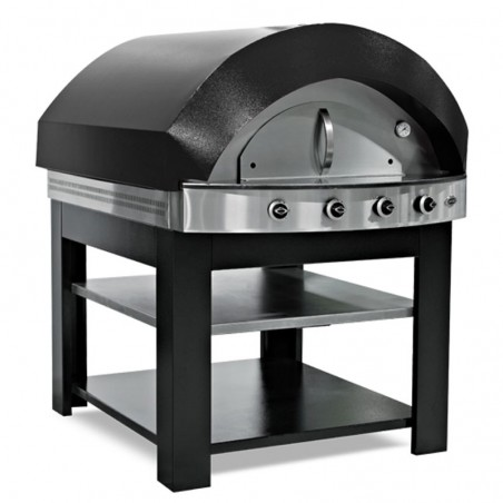 Professional pizza oven...
